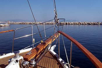 Delphinière bateau